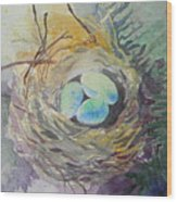 Nest In The Ferns Wood Print