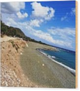 Nestaz Beach Wood Print
