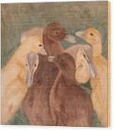 Nestlings.  Ducklings Huddled Together Wood Print
