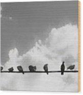 Network Of The Bird Line  Wood Print