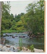 Neuse Falls Trail Wood Print