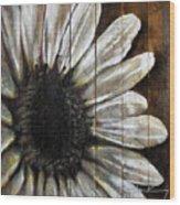 Neutral Sunflower Wood Print