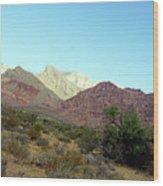 Nevada 1 Wood Print