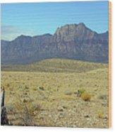 Nevada 2 Wood Print