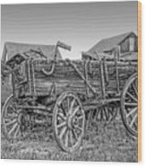 Nevada City Montana Freight Wagon Wood Print by Daniel Hagerman