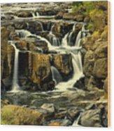 Nevada Falls 5 Wood Print