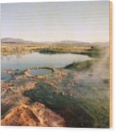 Nevada Hotspring Wood Print