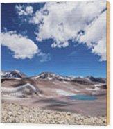 Nevado Ojos Del Salado And Laguna Negra Wood Print