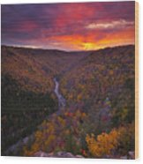 Neverending Autumn Wood Print by Joseph Rossbach