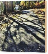 Neverending Path Wood Print