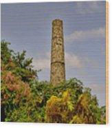Nevis Sugar Mill II Wood Print