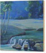 New Braunfels River Scene  Wood Print