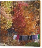 New England Color In October  Wood Print