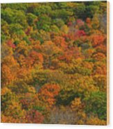 New England Fall Foliage Peak  Wood Print