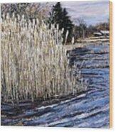 New England Pond Wood Print