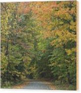 New England Road Wood Print