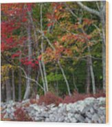New England Stonewall Wood Print