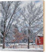 New England Winter Wood Print