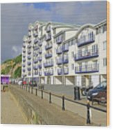 New Flats Overlooking Sandown Esplanade Wood Print
