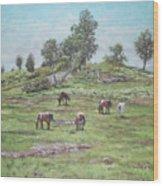 New Forest Lyndhurst Hampshire Wood Print