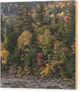 New Hampshire Color Along The Swift River Wood Print