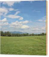 New Hampshire Mountain Meadow Wood Print