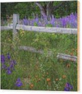 New Hampshire Wildflowers Wood Print