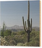 New Mexican Desert Wood Print