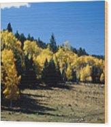 New Mexico Aspen Wood Print
