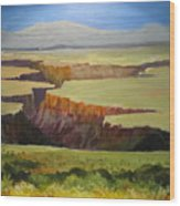 New Mexico Canyon Wood Print