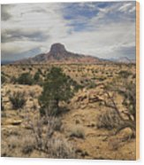 New Mexico Wood Print