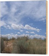 New Mexico Sand Grass Sky Wood Print