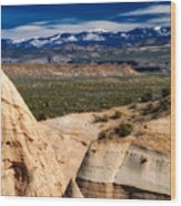 New Mexico Vista Wood Print