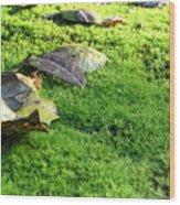 New Moss Wood Print