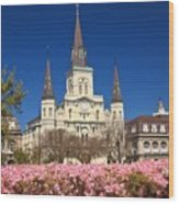 Jackson Square New Orleans Wood Print