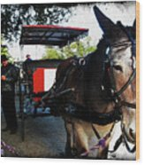 New Orleans Carriage Ride Wood Print