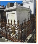 New Orleans Crypts 9 Wood Print