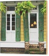 New Orleans Row House Plants Wood Print