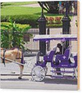 New Orleans Royal Carriage Wood Print