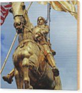 New Orleans Statues 13 Wood Print