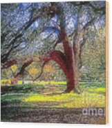 New Orleans Sunday In The Park With George Wood Print