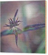 New Plant - 1 Wood Print