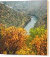 New River Gorge Wv Wood Print