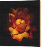 New Rose Wood Print