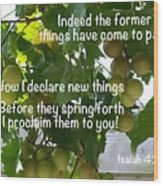 New Things Scripture Wood Print