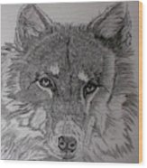 Wolf. Wood Print by Cynthia Adams