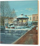 Triangle Park In Winter Wood Print