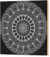 New Vision Black And White Wood Print
