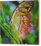 New Wings Wood Print