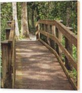New Wood Bridge Park Trail Wood Print